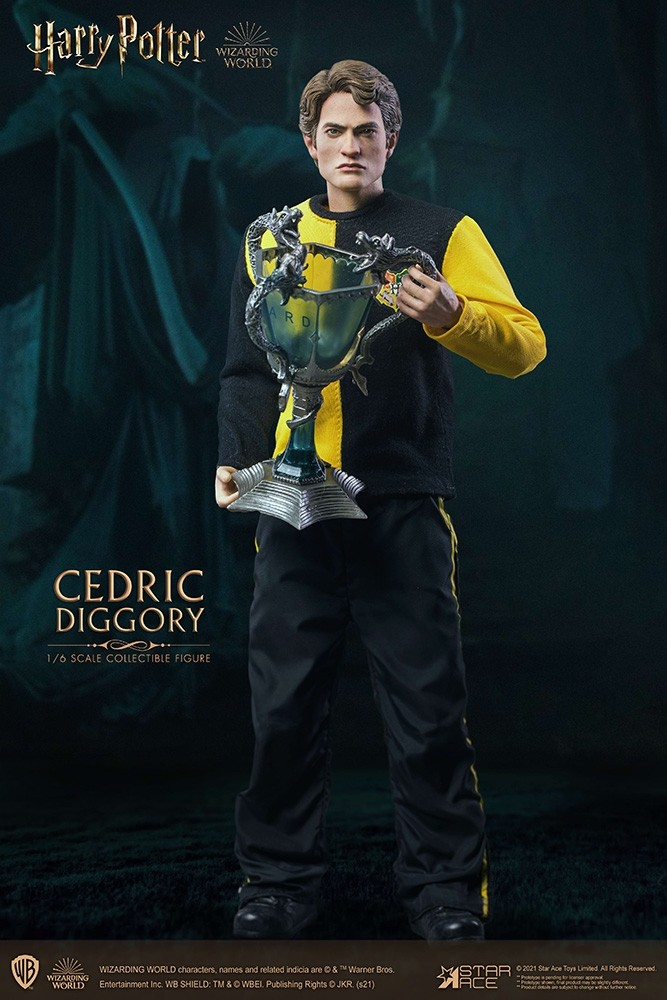 Harry Potter Cedric Diggory 1/6 Action Figure