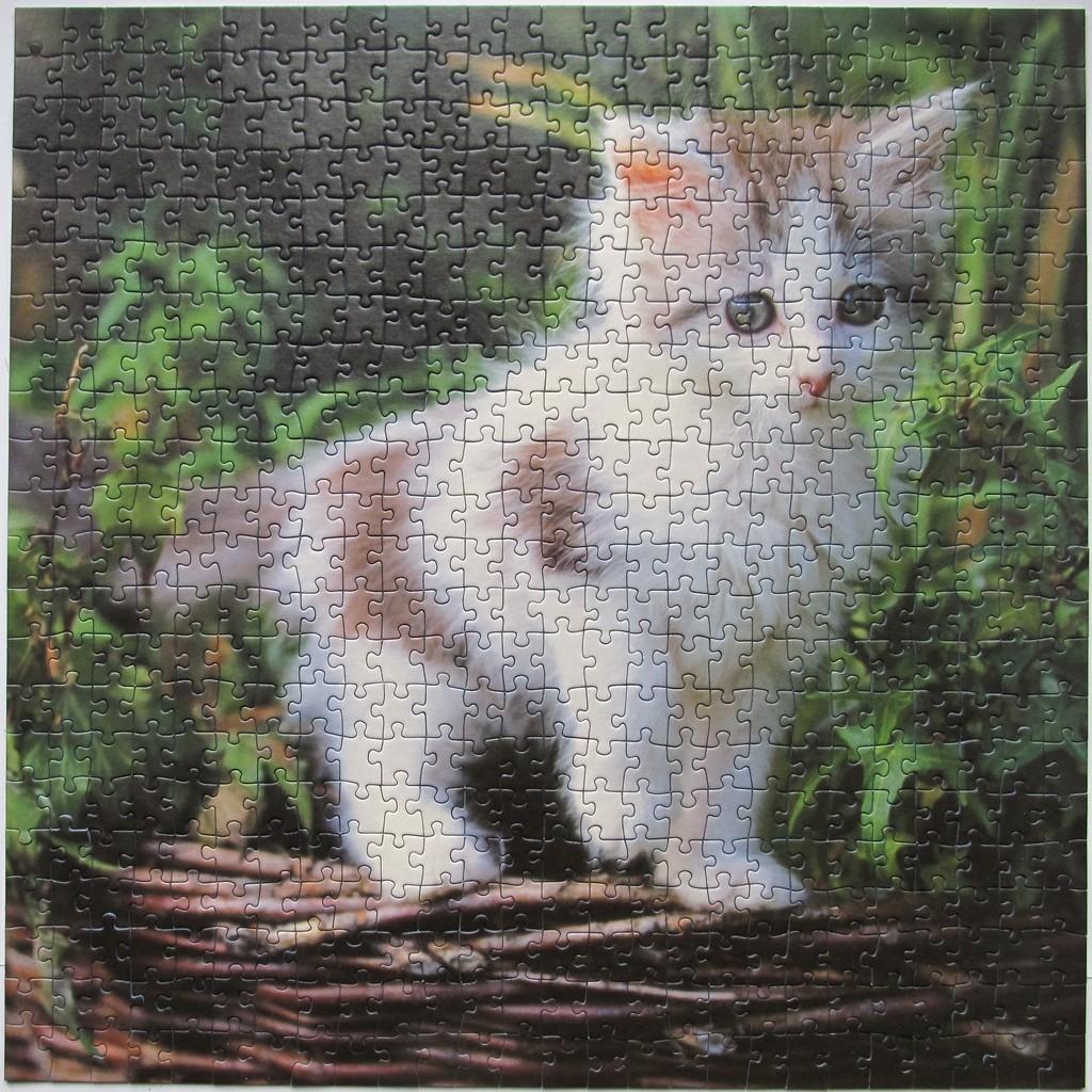Ravensburger Puzzle 500 Curious Kitten