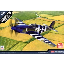 USAAF P-51B `Invasion of Normandy 70th Anniversary