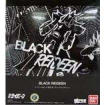 Super Robot Chogokin Black Raideen