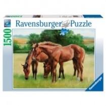Ravesburger Grassy Horses 1500