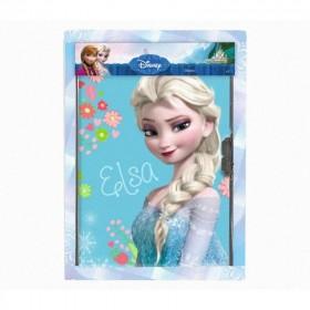 Frozen diario segreto