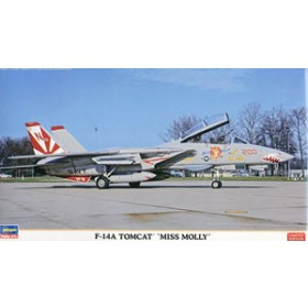 F-14A Tomcat Miss Molly by Hasegawa